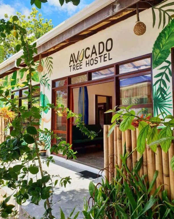 where to stay in siargao - avocado tree hostel entrance