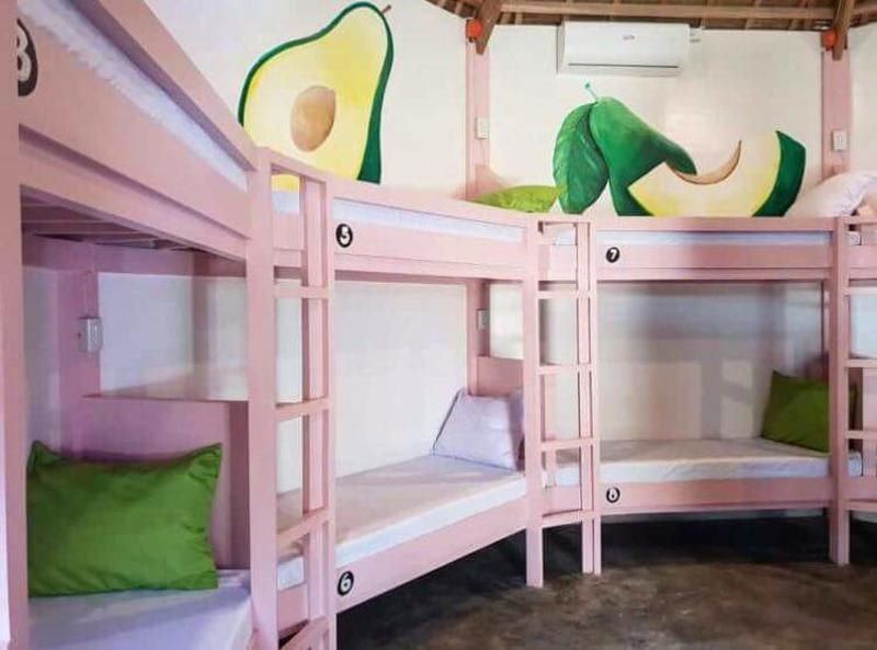 where to stay in siargao - avocado tree hostel beds
