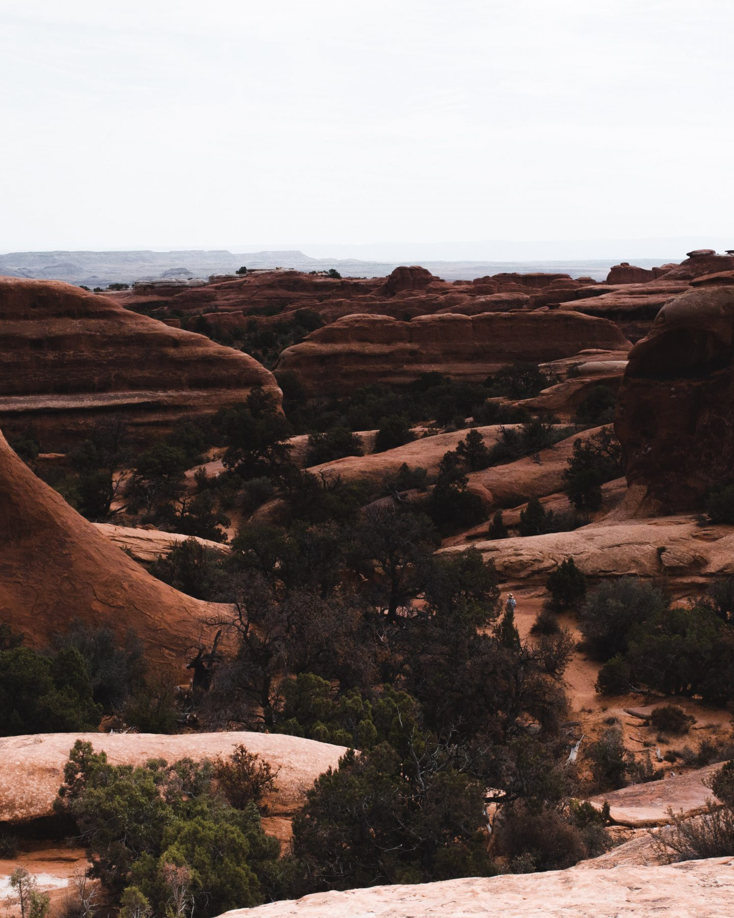 Arches National Park is one of the most beautiful National Parks in Utah, and with hikes like these, you can't help but want to pay this vast desert a visit. I have explored every inch of this park, so these top Arches National Park hikes are THE trails you don't want to miss while on a road trip through Utah! #archesnationalparkhikes #hikesinarchesnationalpark #archesnationalpark #utah #utahnationalparks